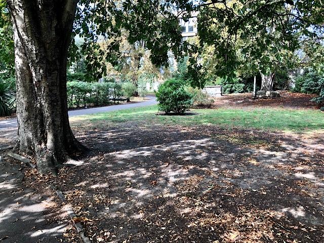 St Alfege Park